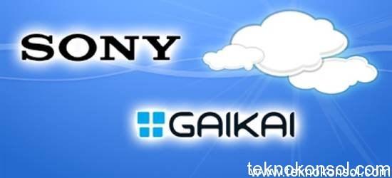 sony and gaika